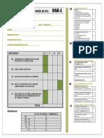 OSAL-L CASTELLANO CON ACLARACIONES 15-06-18(2).pdf
