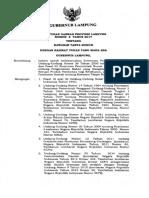 P_LAMPUNG_8_2017.pdf