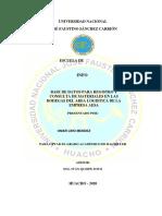TESIS PROGRAMA ELVI-convertido.docx