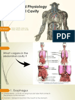 Anatomy and Physiology of Abdomen.pptx