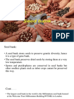 Seed Bank Ppt