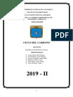 Ciclo del Carbono.docx