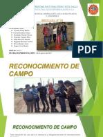 DIAPOSITIVAS DE INFORME FINAL (expo).pptx-822176012.pptx