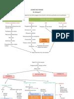 Konsep-Map-Stroke.docx