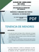 Tenencia y Regimen de Visita de Menores TEMA 3