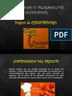 Creatividad y Pensamiento Innovador Yogur de Chontaduro