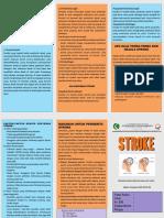 leaflet peny stroke