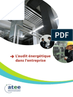 audit_nrjfinal.pdf
