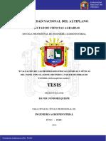 Condori_Quispe_David.pdf