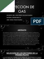 INYECCION DE GAS-REINA.pptx