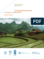 undp_synthesis_report.pdf