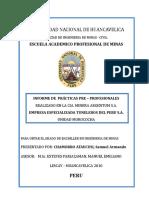 INFORME DE PRACTICAS PRE-PROFESIONAL- CHAMORRO 11112doc