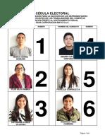 Cédula Electoral CIFHS