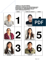 Cédula Electoral CIFHS.pdf