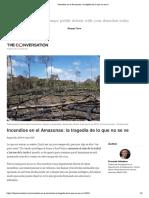 Incendios en El Amazonas_ La Tragedia de Lo Que No Se Ve