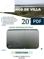 PANTANOS_VILLA.pptx