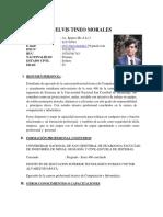 CV-elvis-tineo-morales  final.docx
