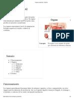 Órgano (anatomía) - EcuRed