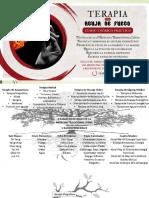 aguja de fuego.pdf