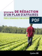 Guide Dered Action Plan Affaires