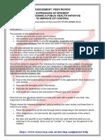 Assessment Peer Preview