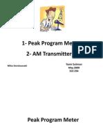 Peak Program Meter - AM transmitter - DSP Tamir Suliman