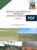 SAPS.pdf