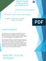 GESTIÓN DE PROYECTOS DE INVERSIÓN PÚBLICA EN EL MARCO DEL INVIERTE.PE