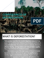 Consequences of Deforestation by Ritika Agarwal