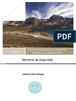 Presentacion de Estandar de IAIA Proyectos