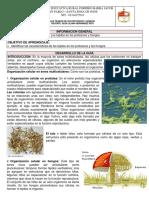 2 Guía Los Tejidos en Protozoos y Hongos.