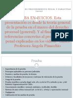 PRUEBA_EN_JUICIOS
