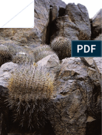 Two new Copiapoas (Cactaceae) para Chile  DCJMB09.pdf