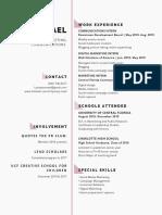 lynsey mael resume