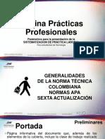 Generalidades de la normaAPA para informe de prácticas - copia