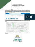 PROTOTIPO.docx