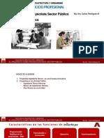 ARQ PROYEC SECTOR PUBLICO.pdf