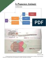 Semiologia do sistema nervoso de Pequenos Animais.docx