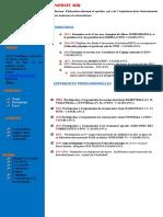 0 0 54 Modele Cv Perspicace Converti Ilovepdf Compressed