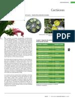 Cactaceas general_unlocked.pdf