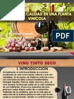planta vinicola