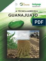 Agenda Técnica Guanajuato OK.pdf