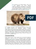 1 Urso.docx