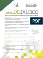 Revista Salud Jalisco No 2 Pantalla 2