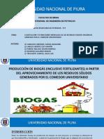 EXPO BIOGAS.pptx