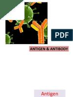 Antibodi and Antigen
