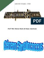 Streptococus