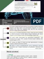 MPS_PPT Endokrine Disruptor