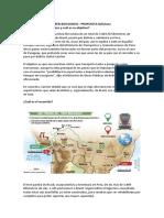 Propuesta chilena INFORME.docx
