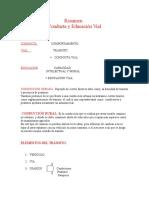 resumen Conducta y Educación Vial (1).doc